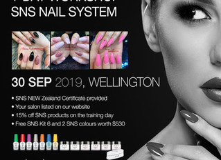 SNS Training Workshop in Wellington