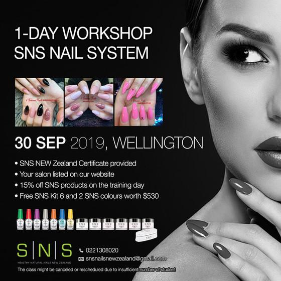 SNS Training Workshop in Wellington