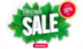 SNS christmas&new year sale 2019 copy.pn
