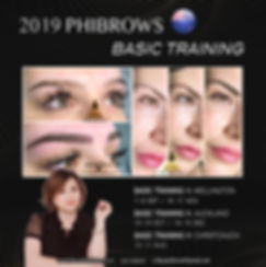 2019 phibrows basic training