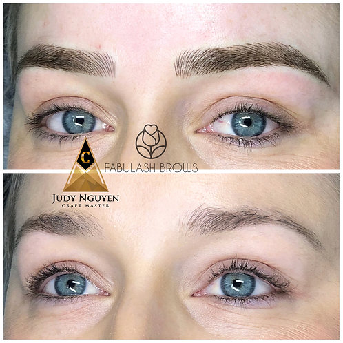 Eyebrow Cosmetic Tattoo Master Package