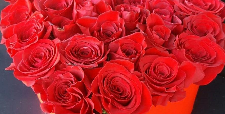 Heart of roses (medium)