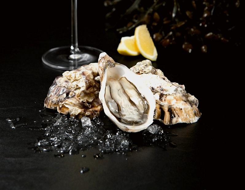 oysters%2520on%2520ice_edited_edited.jpg
