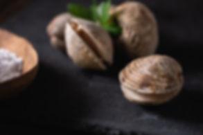 Live sea truffles on slate plate, low ke