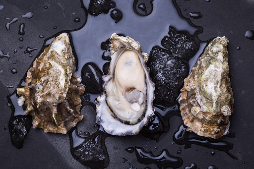 Fresh oysters seafood.jpg