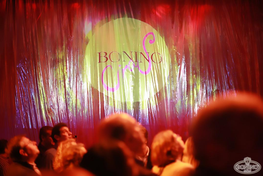 BONINO - CIRCUS PARTY - 13