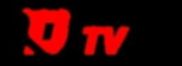 dealer_tv-logo-ai-flat.png