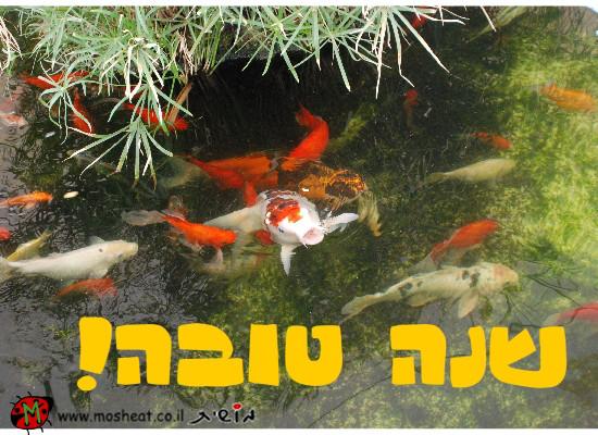 שנה טובה דגים