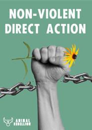 Non-Violent Direct Action Poster