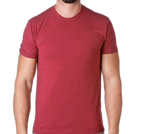 Next Level Mens T-Shirt.png