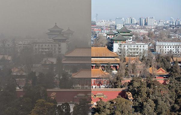 จีนแก้วิกฤติมลภาวะจากฝุ่นควันในอากาศด้วยการปลูกป่า