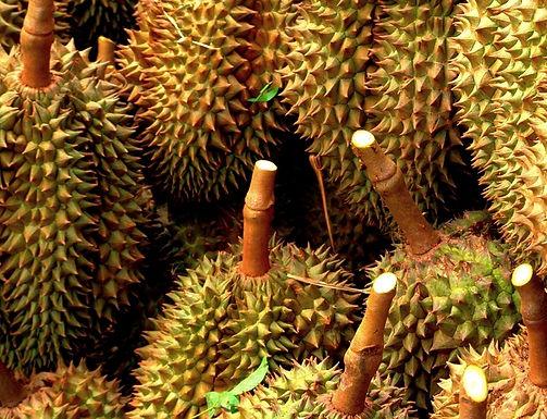 โอกาสของการขายส่งผลไม้ไทยที่กว่างโจว