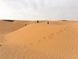 Sahara Desert...in Israel!