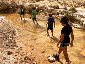 בין מישר לנחל סעיפים- מסלול טיול חדש ונפלא לכל המשפחה במרחק נסיעה קצר מאילת!