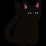 Color-Black Cat Pin (1).png