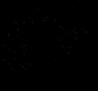 ZERON Vineyards-png-SSC-black_edited.png