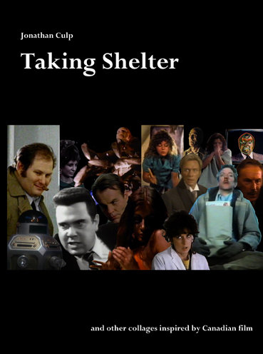 Taking Shelter (DVD)