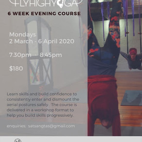 6 week Aerial Yoga Course March 2-April 6