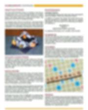 Capture PAGE 4.JPG