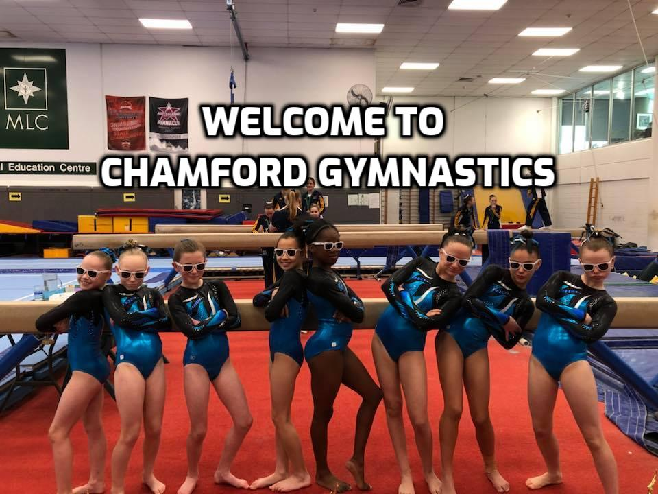 Welcome to Chamford Gymnastics.jpg