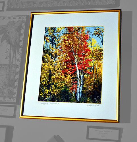 Bob Strom, Minnesota Autumn II