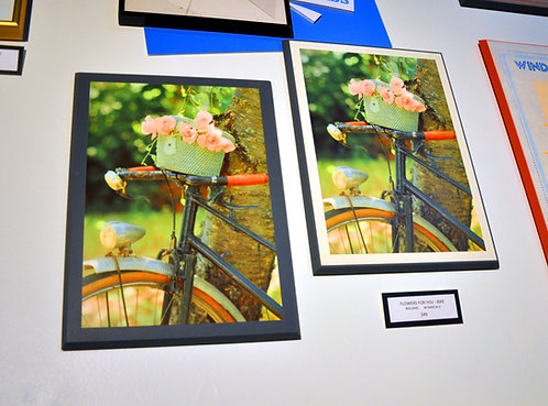 Rolland, Flowers for You, Bike