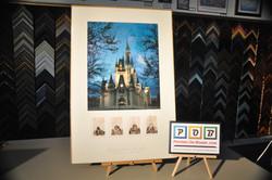 PostersOnBoard.com, Disney