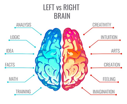 rightleft brain.png