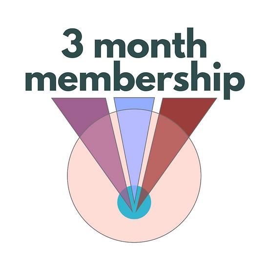 3 months of membership