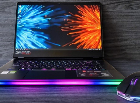 MSI GE66 Raider (Gaming Laptop)
