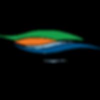 South-Lake-Chamber-Vector-Logo-Small.png