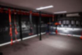 brentwood centre gym 2.jpg