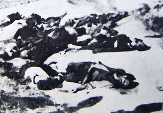 Dabnica massacre photo1.jpg