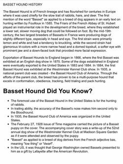 Hound History