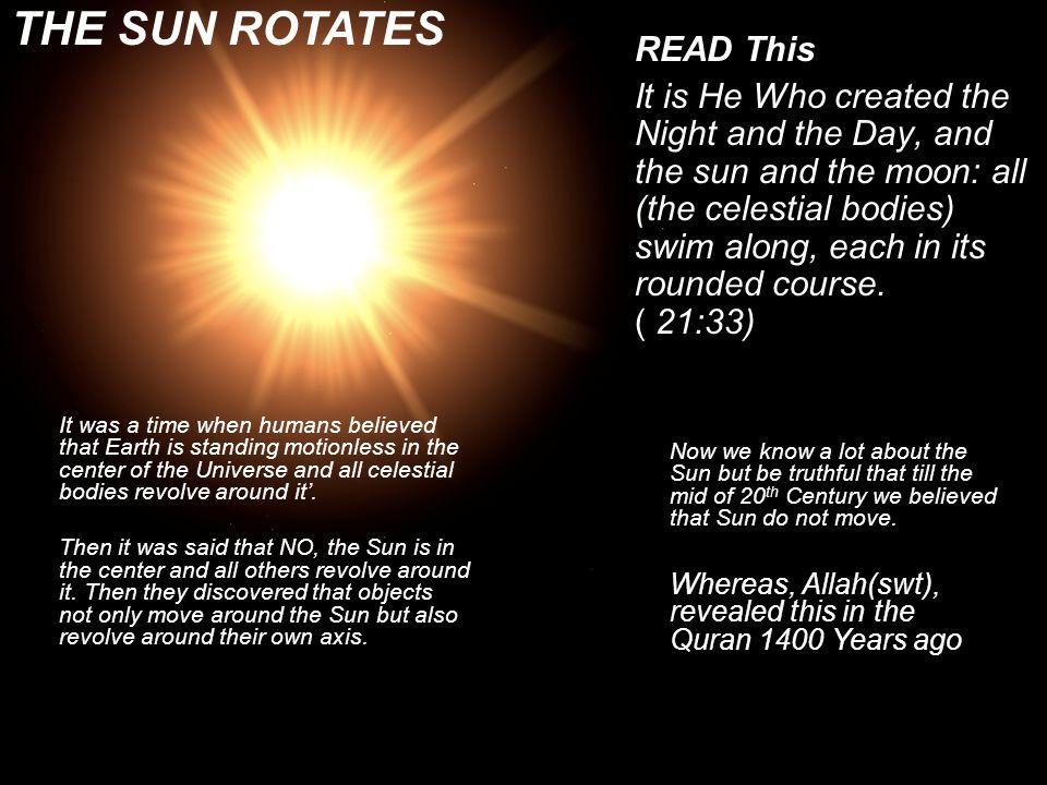 The Sun Rotates in its own orbit