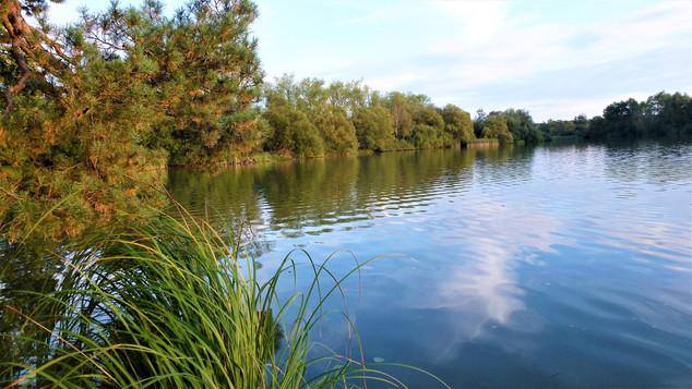 Melancholie Kařezských rybníků