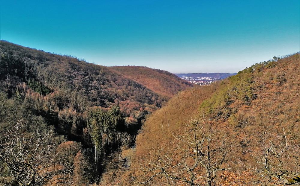 Z vyhlídky Na Skále můžete sledovat Točenskou rokli  a zároveň hloubku Břežanského údolí