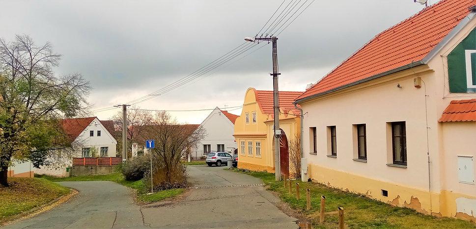 Vesnická památková rezervace Černice - P