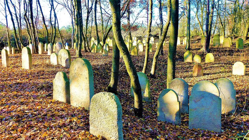 Samota židovských hrobů ve Všerubech (VP