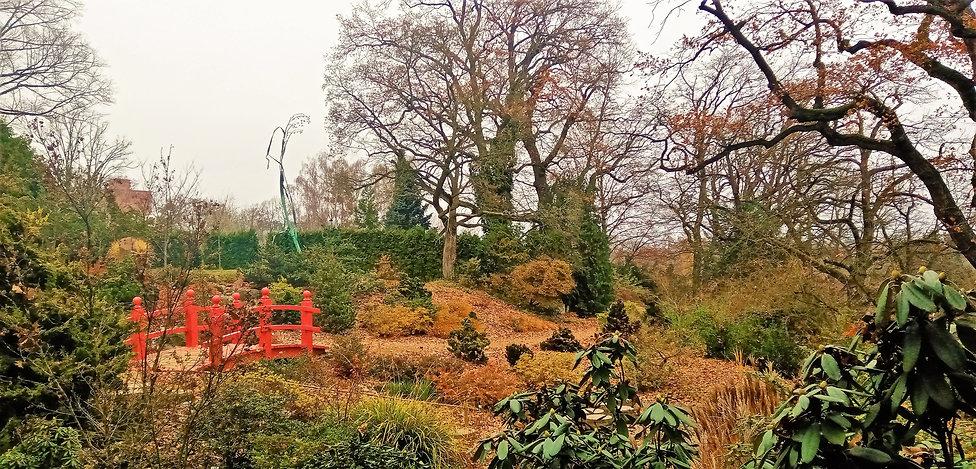 Na pozadí japonské zahrady v plzeňské ZO