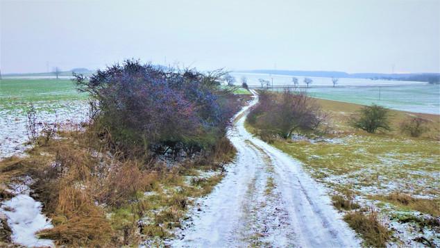Galerie: Malebnost zimní krajiny