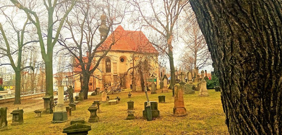 Plzeňský slavín - hřbitov u kostela svat