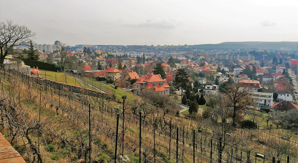 Vyhlídka Modřanské výhledy nabízí krásné pohledy na tuto část Prahy