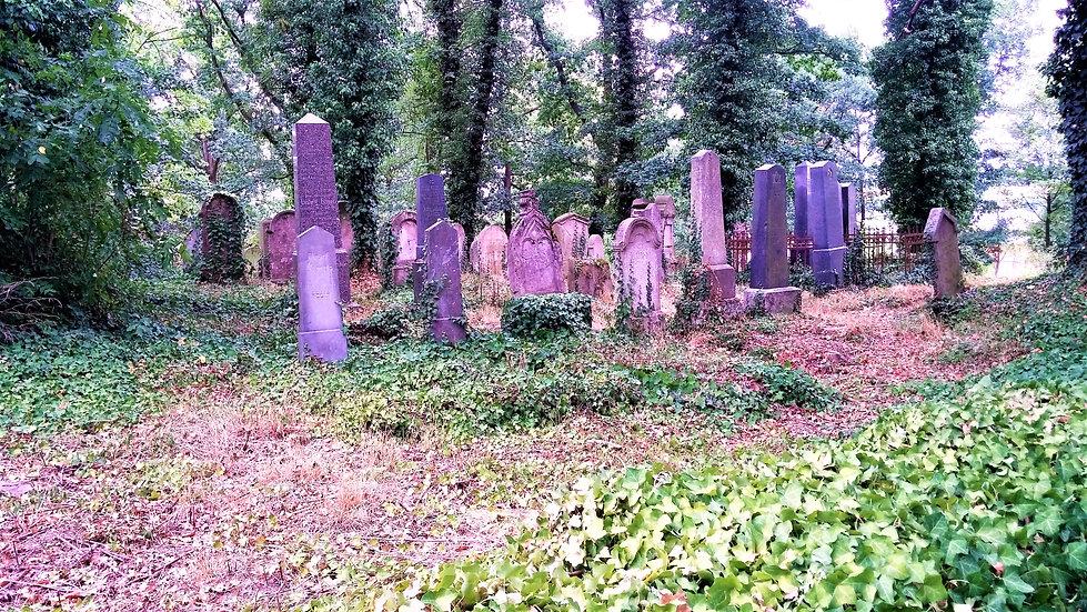 X - Na židovském hřbitově v Oseku (VP).j