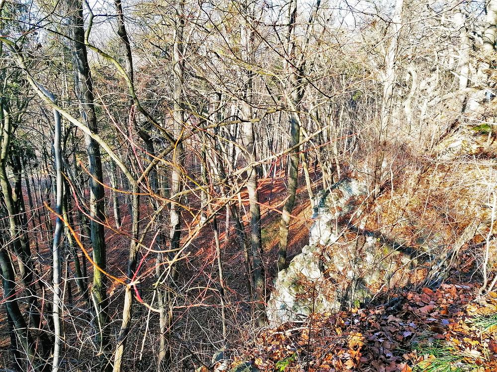 Výjimečné strmé opukové stráně spadají pod Národní přírodní rezervaci Malý a Velký štít