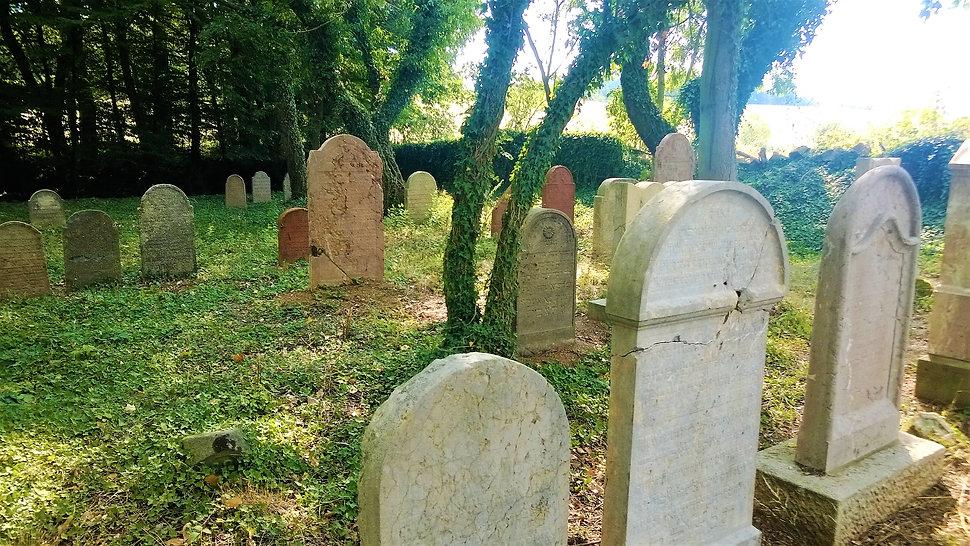 X - Židovský hřbitov Terešov.jpg