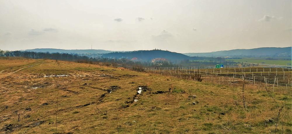 Výhled na Zbraslav a vysílač Cukrák z ekoduktu Šabatka