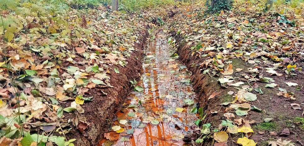 Železitá voda odtékající z PP Kopeckého