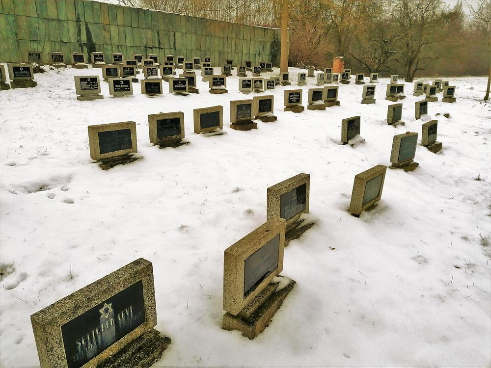 Na židovském hřbitově v Terezíně bylo pohřbeno až 13 tisíc obětí holocaustu