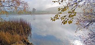 Podzim už zcela opanoval Velký rybník v
